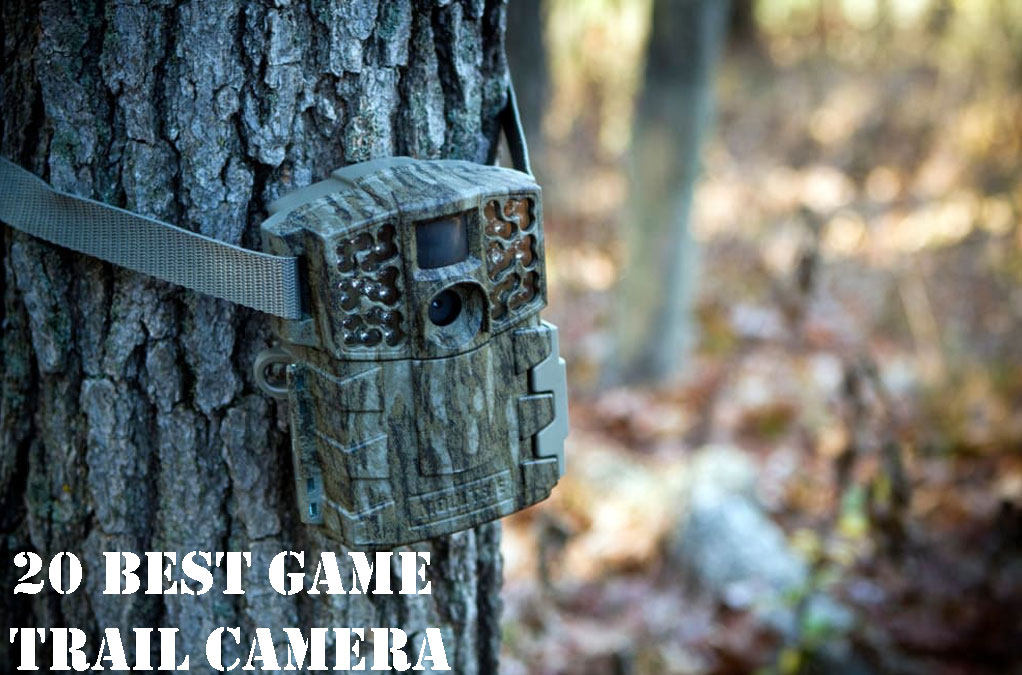 Best-Game-Trail-Camera-Reviews